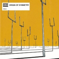 muse-originofsymmetry