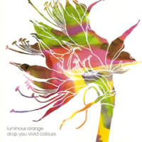 luminousorange-dropyouvivid