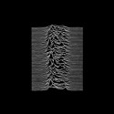 joydivision-unknown