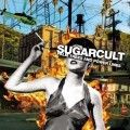 sugarcult-palmtrees